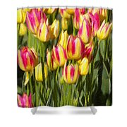 Too Many Tulips Shower Curtain