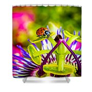 Too Much Of Heaven Shower Curtain