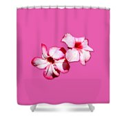 Too Pink Shower Curtain