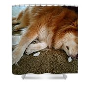 Too Tired For Treats Shower Curtain