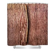 Tools On Wood 54 Shower Curtain