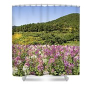Toong Bua Tong Forest Park Shower Curtain