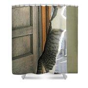 Tip Toe Cat Shower Curtain