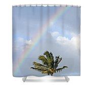 Top Of A Palm Tree Shower Curtain