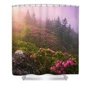 Top Of The Mornin' Shower Curtain