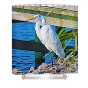 Topsail Egret Shower Curtain