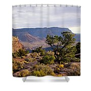 Toroweap Shower Curtain