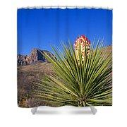 Torrey Yucca Shower Curtain