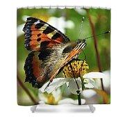 Tortoise Butterfly Shower Curtain
