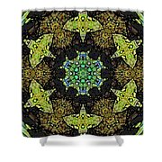Tortuga  Shower Curtain