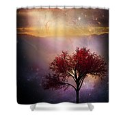 Total Eclipse Of The Sun Tree Art Shower Curtain