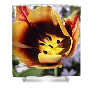 Totally Tulip Shower Curtain