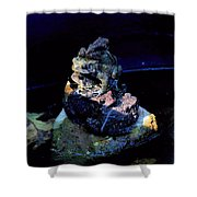 Totem Frogs Shower Curtain