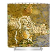 Totem Graphics Shower Curtain