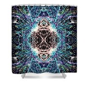 Totems Of The Vision Quests #1526 Shower Curtain