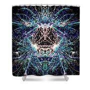 Totems Of The Vision Quests #1529 Shower Curtain
