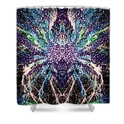 Totems Of The Vision Quests #1530 Shower Curtain