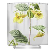Touch Me Not Shower Curtain
