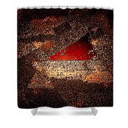 Touch Of Brown Shower Curtain