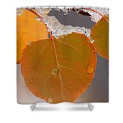 Touch Of Winter Shower Curtain