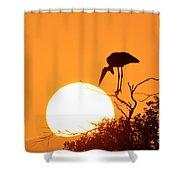 Touching The Sun Shower Curtain