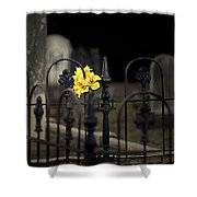Toujours Souvenu Shower Curtain by Marion Cullen