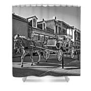 Touring The French Quarter Monochrome Shower Curtain