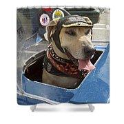 Tourist Dog 2 Square Shower Curtain by Karen Zuk Rosenblatt