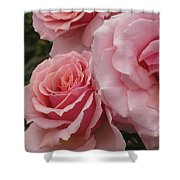 Tournament Of Roses Shower Curtain