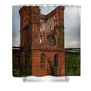 Tower Of Ruins Shower Curtain