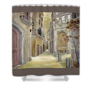 Town Alley Shower Curtain