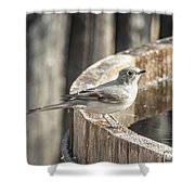 Townsends Solitaire Shower Curtain