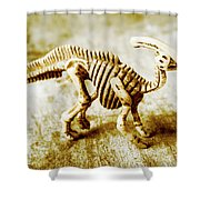 Toys And Artefacts Shower Curtain
