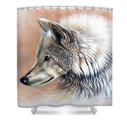 Trace IIi Shower Curtain