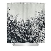 Traces Of Reality Shower Curtain