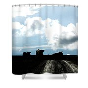 Tracks And Horns Shower Curtain