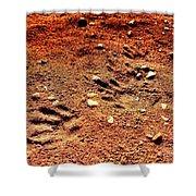 Tracks On Mars Shower Curtain