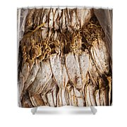Traditional Sun Dried Squid In Kep Market Cambodia Shower Curtain