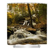 Trahlyta Falls Shower Curtain