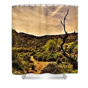 Trail Guardian No. 2 Shower Curtain