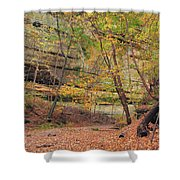 Trail In Tonty Canyon Shower Curtain
