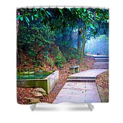 Trail In Woods Shower Curtain