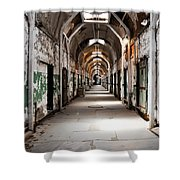 Trail Of Choices Shower Curtain