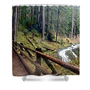 Trail Over Sol Duc Falls Bridge In Olympic National Park Shower Curtain