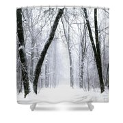 Trail Through The Winter Forest Shower Curtain