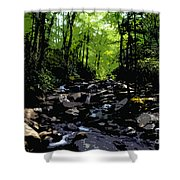 Trail To Chimney Top Shower Curtain