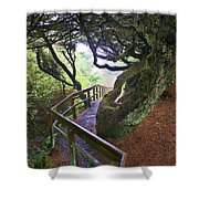 Trail To Copalis Beach Shower Curtain