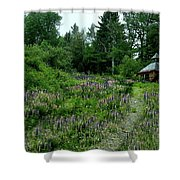 Trail To The Cabin Shower Curtain