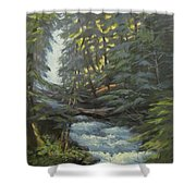 Trail To The Falls Shower Curtain