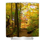 Trailhead Light Shower Curtain by Ed Smith